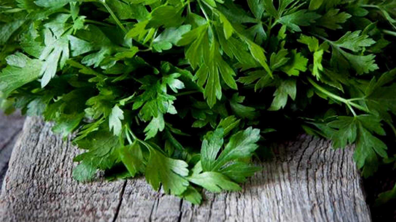 Parsley's Superb Benefits on Health and Body